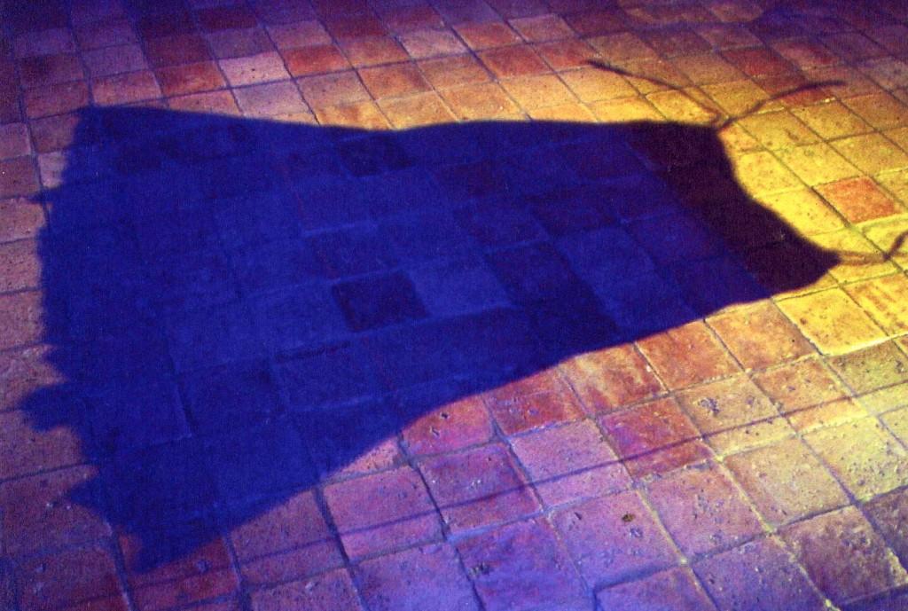l'ombre de la robe JL Cremet, pont-scorff 2004