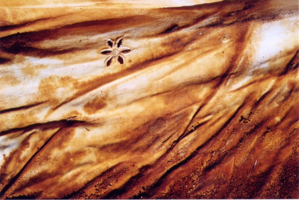 détail robe  sept 2003